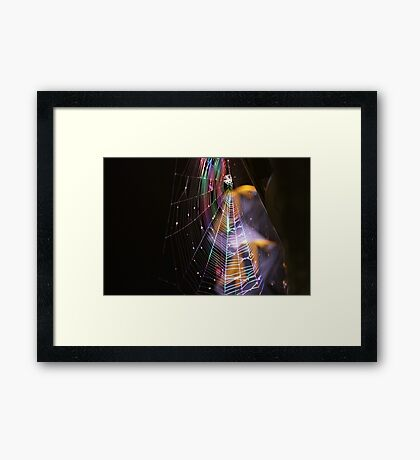 Webbed Disco Framed Print