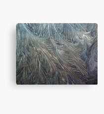 Frosty Windscreen Canvas Print