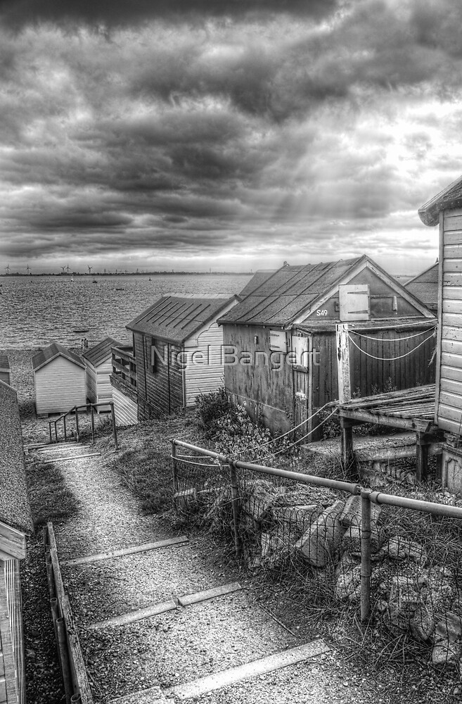 Path to the Sea by Nigel Bangert
