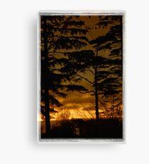Tree Silouette v3-framed Canvas Print