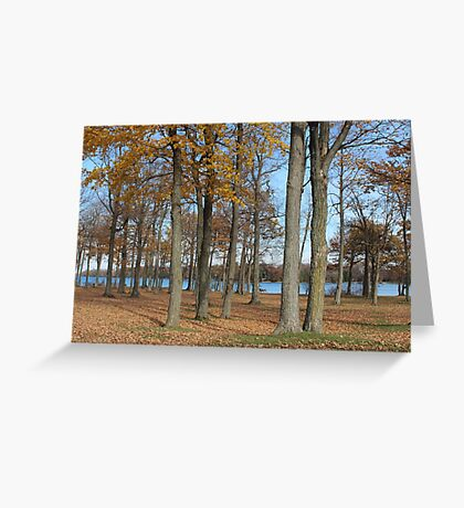 Beauty of Fall Greeting Card