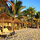 Beach Living by MarkySA