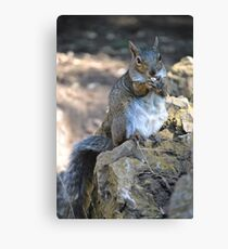 Working for Peanuts Canvas Print