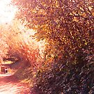 Rural Idyll by Chris1249