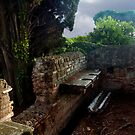 Ostia Antica: public facilities by Quixotegraphics