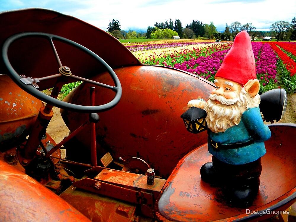 Rusty Fields Gnome by DustysGnomes