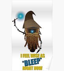 CLAPTRAP WIZARD! Poster