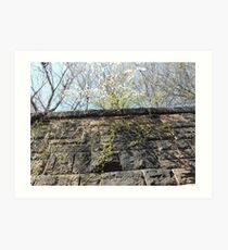 Harsimus Branch Embankment, Abandoned Pennsylvania Railroad Embankment, Jersey City, New Jersey Art Print