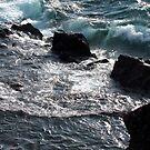 Southern Headland- Pukaskwa National Park - Heron Bay, Ontario Canada by loralea