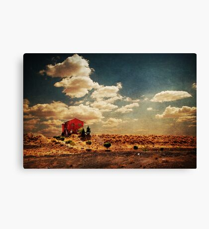 The House We Built Canvas Print