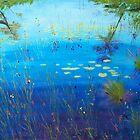 Fen by Pam Wilkie