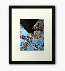 Fall Series 70 Framed Print
