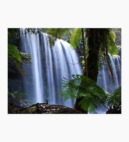 Russell Falls #2 - Tasmania Photographic Print