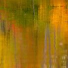 Abstract Autumn  by Gregory Ballos