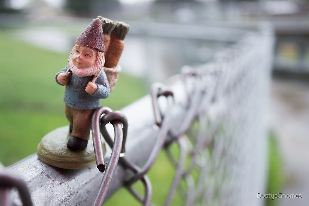Fence Walker I by DustysGnomes