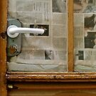 door that is dreaming of Art...... by anisja