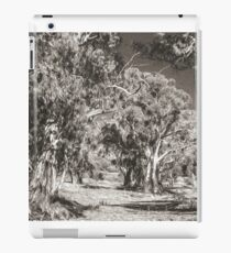 The Majesty of River Gums iPad Case/Skin