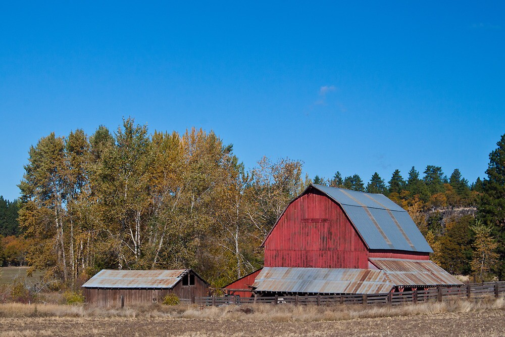 Red Barn in Washington State by Marvin Mast
