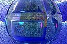 World Made of Glass by Benedikt Amrhein
