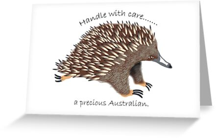 Echidna by rodesigns
