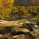 Autumn at Bulls Bridge by Karol Livote