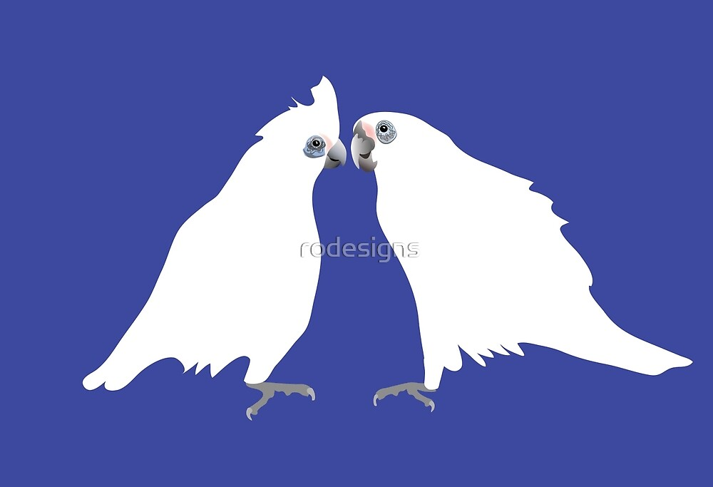 Corellas by rodesigns
