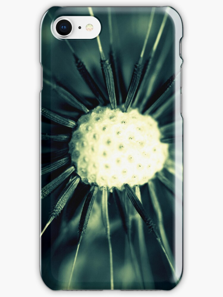 Dandelion- iPhone Case by Sarah Donoghue