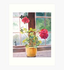 Watercolor, Geraniums at Gillthwaite Rigg, Windermere Art Print