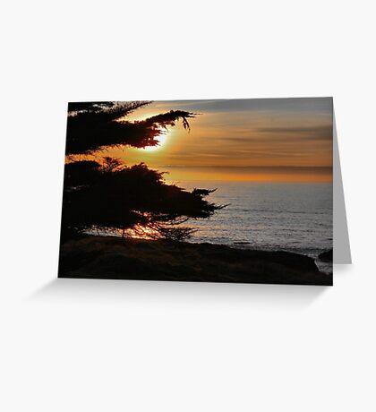 Sea Ranch Sunset Greeting Card