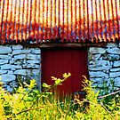 Ababdoned House on the Isle of Skye by shaley