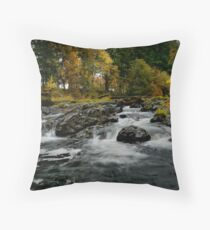 Calapooia Falls Throw Pillow