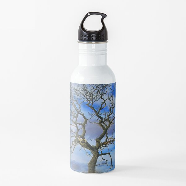 Tree On An Island Water Bottle