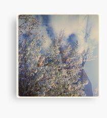 cloudbuster Metal Print