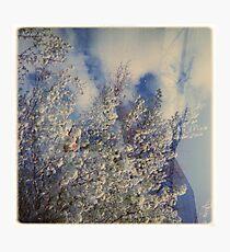 cloudbuster Photographic Print