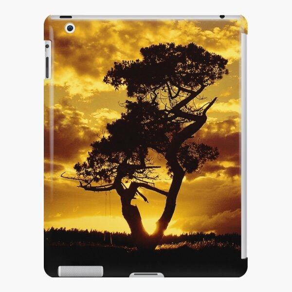 Tree Dance 2 iPad Snap Case