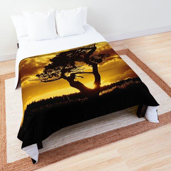 Tree Dance 2 Comforter