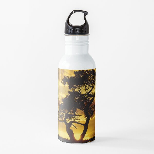 Tree Dance 2 Water Bottle