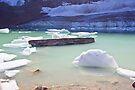 Detached Ice from the Angel Glacier in Alberta by Yannik Hay
