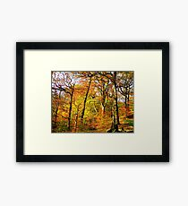 Colourful Countryside Framed Print