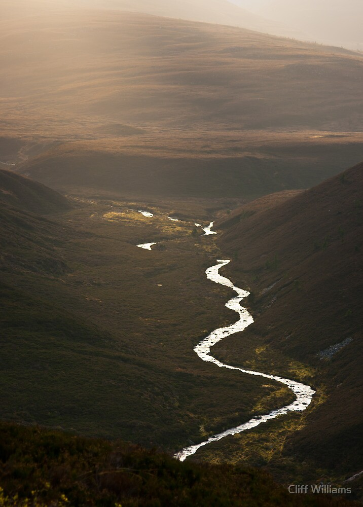 Glorious light in the Cairngorms by Cliff Williams