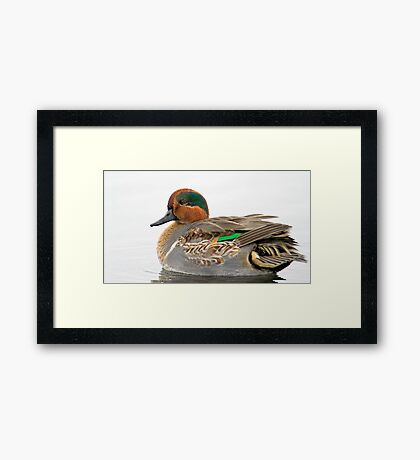 By the Shore Framed Print