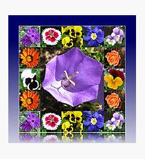 Summers Gone By Floral Collage Photographic Print