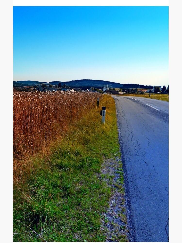 Poppy field road by patrickjobst