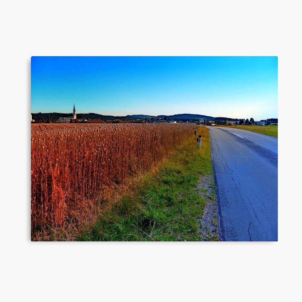 Poppy field road Canvas Print