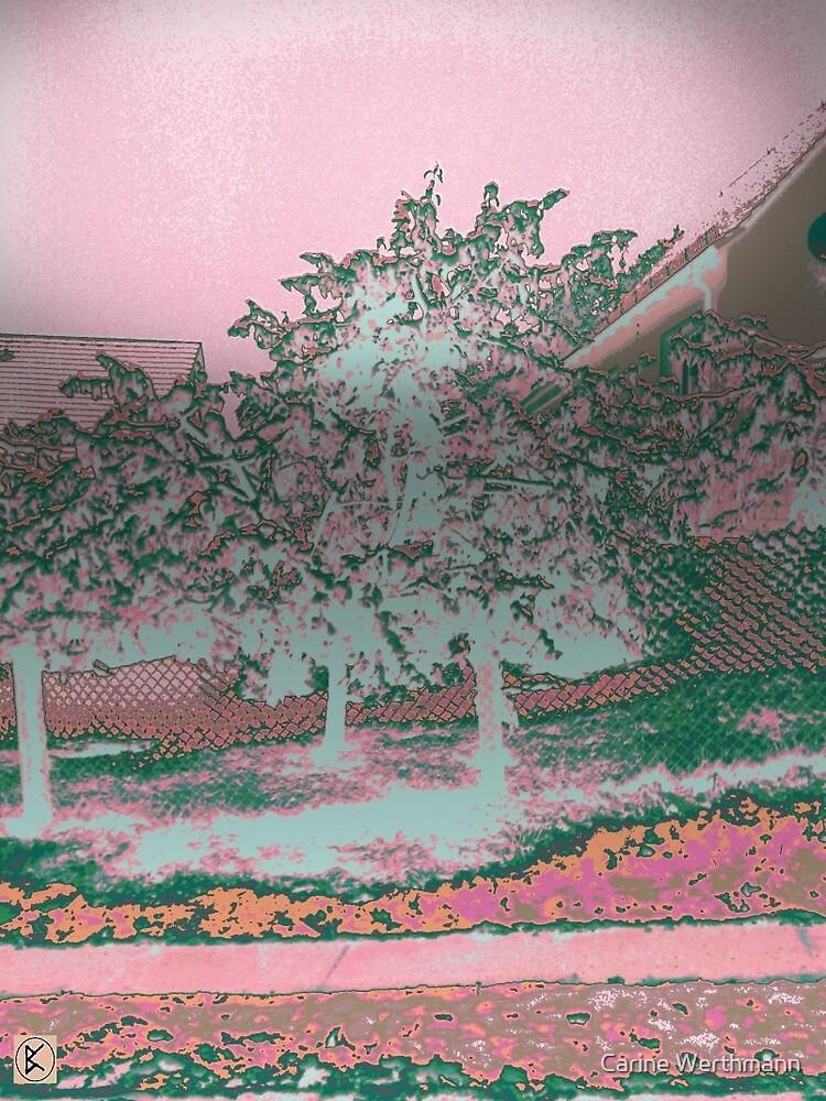 Pink Landscape by Carine Werthmann