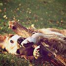 Golden boy by LadyFi