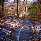 Dusting of snow on the Trail by David Owens