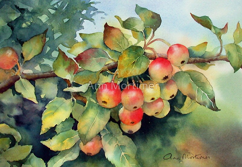 Quot Green Crab Apples Quot By Ann Mortimer Redbubble