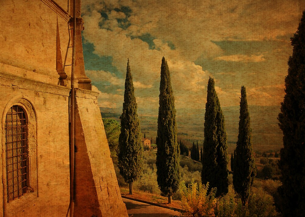 Cypress Family-Pienza, Tuscany by Deborah Downes