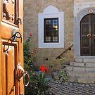 Hafiz  Ahmet Aga Library, Rhodes,Greece by Patricia127